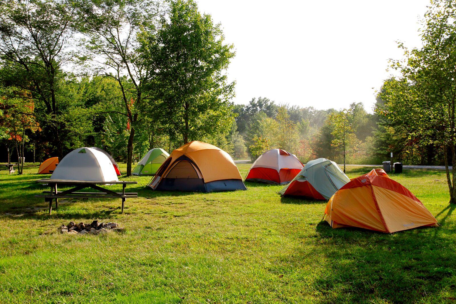 """Табір без обмежень: поблизу Вінниці вдруге відбудеться інклюзивний """"Connection Camp"""""""