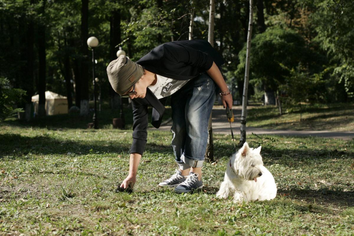 Прибирайте лайно або платіть штраф: вінничани хочуть навчити  власників собак етикету вигулу  тварин