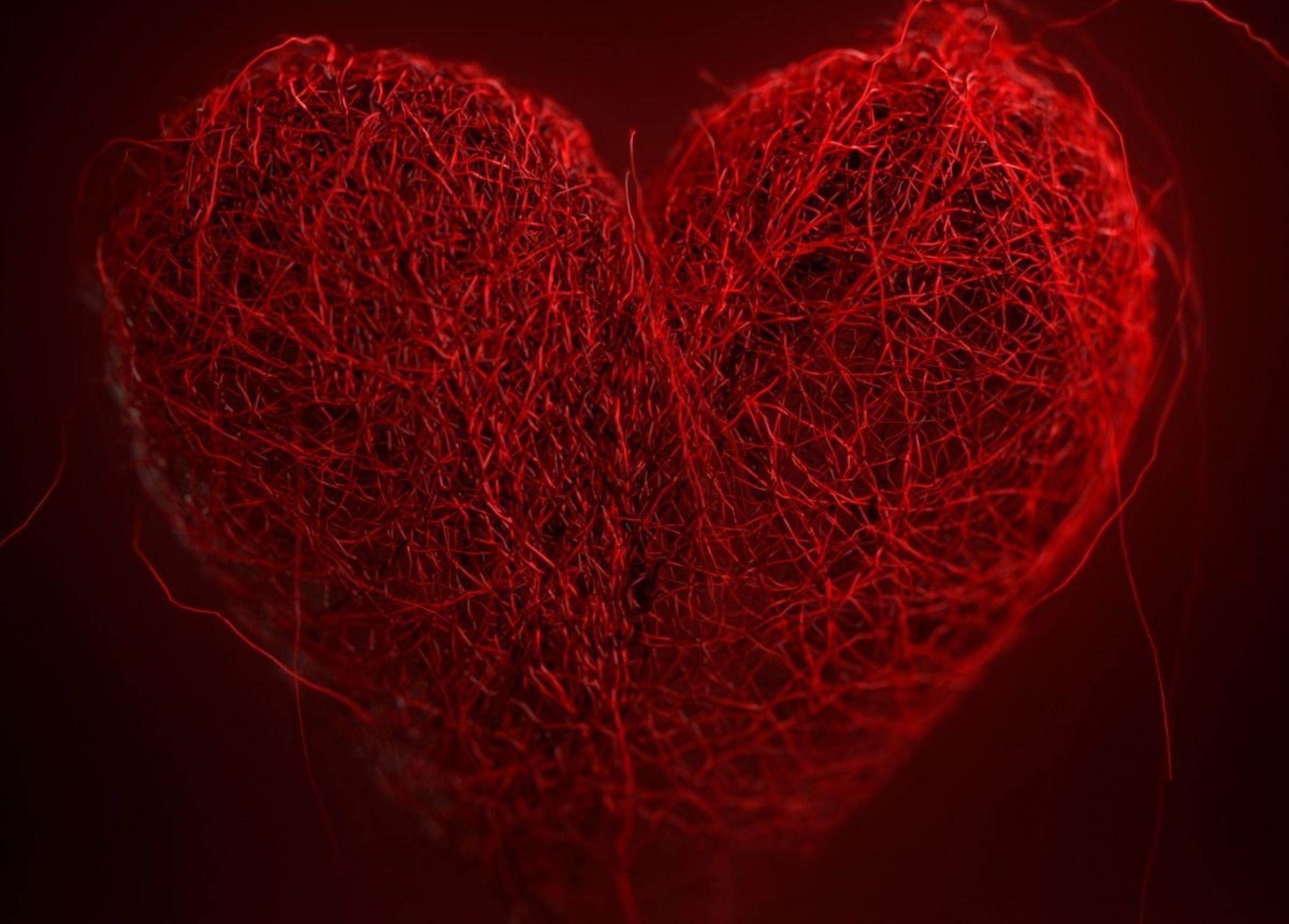 Як у Вінниці відзначити День Святого Валентина: огляд вечірок, концертів та заходів