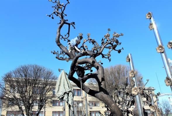 Вінницький активіст закидав Дерево Свободи мотлохом і пообіцяв робити це постійно. ВІДЕО