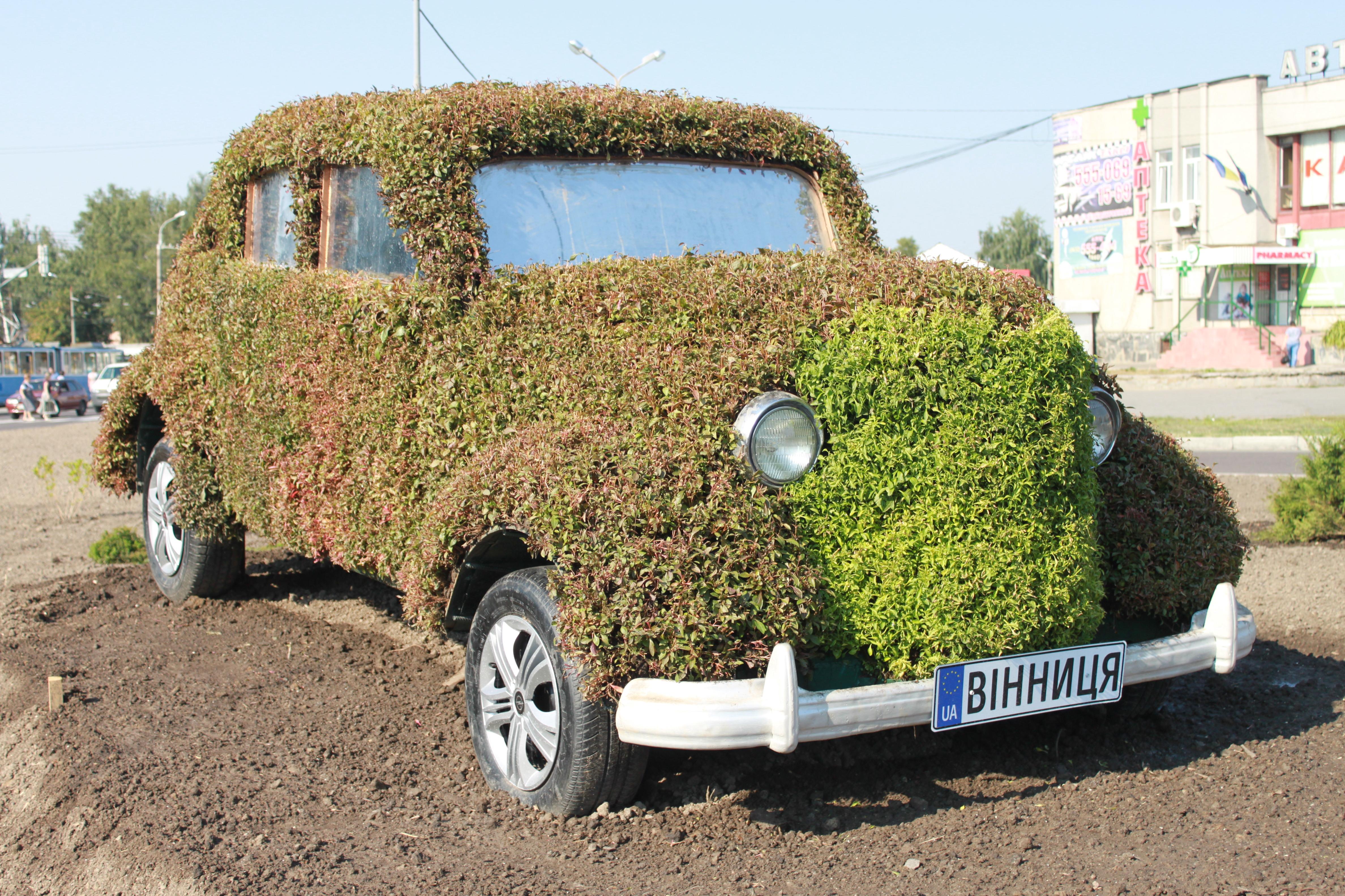 """""""Живий"""" вінницький Opel Olimpia на в'їзді до міста озеленюють заново. ФОТО"""