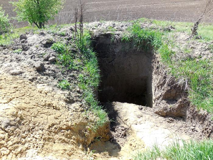 На Вінниччині мародери розграбували скіфську могилу. ФОТО