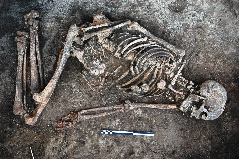 Унікальні похоронні ритуали: на Вінниччині польські вчені дослідили старовинний курган