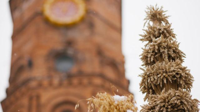 У центрі Вінниці встановлять триметрового дідуха та відкриють святкову виставку