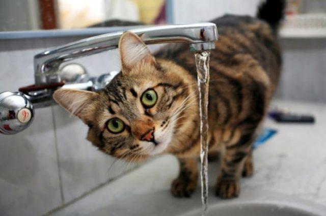 У кількох районах Вінниці очікують пониження тиску води