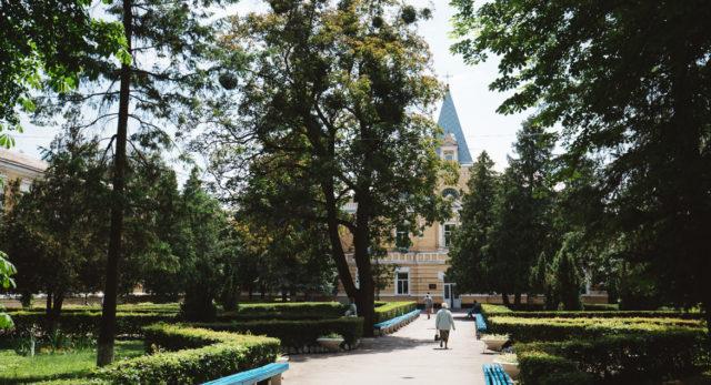 Вінничан просять допомогти з посадкою 500 дерев у парку імені Ющенка