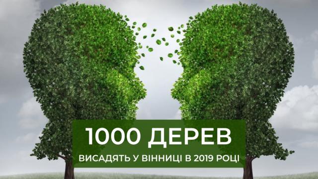 У Вінниці в 2019 році планують висадити тисячу дерев