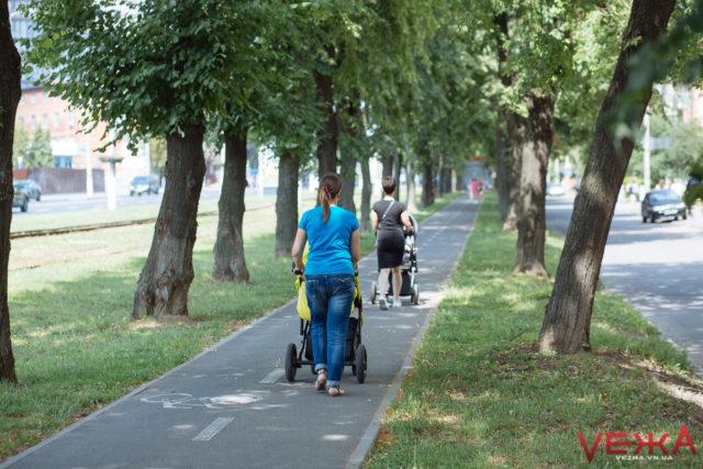"""Вінничани пропонують """"захищати"""" велодоріжки від пішоходів за допомогою соціальної реклами"""