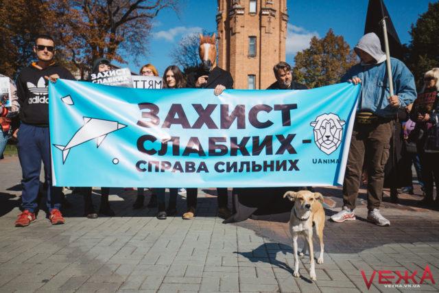 Вінниця доєднається до Всеукраїнського маршу за тварин