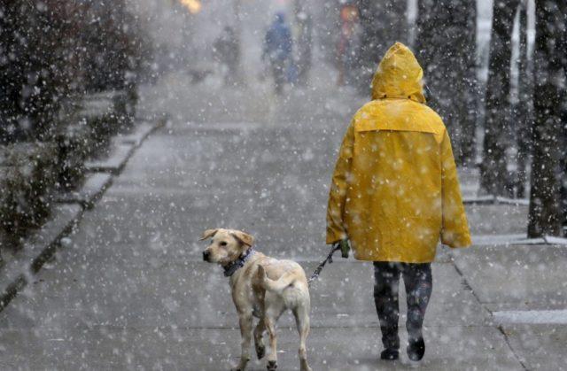 Мокрий сніг та ожеледиця: у Вінниці прогнозують погіршення погодних умов