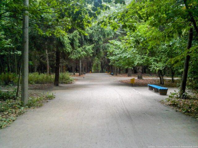Що може з'явитись у парку Дружби народів замість городів? Виконком міськради ухвалив рішення