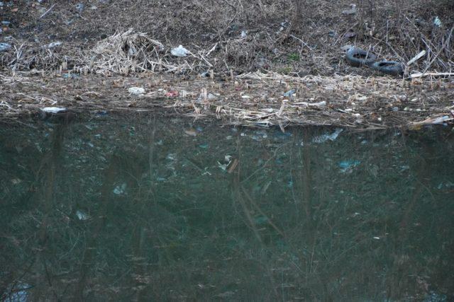 Вінничани просять прокласти каналізацію по Покришкіна та очистити озеро