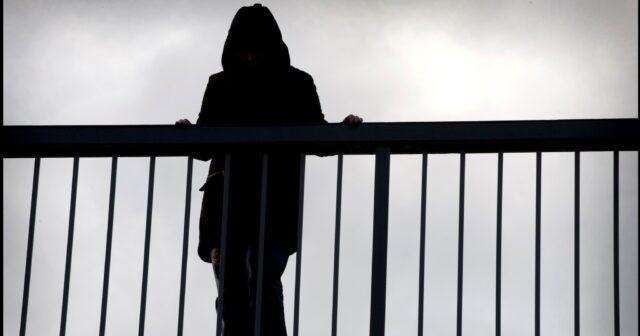 Вінницькі патрульні розшукали вінничанку, яка намагалася стрибнути з мосту. ВІДЕО