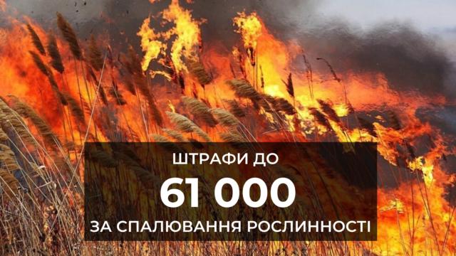 Штрафи до 61 тисячі гривень: в Україні посилили відповідальність за спалювання рослинності