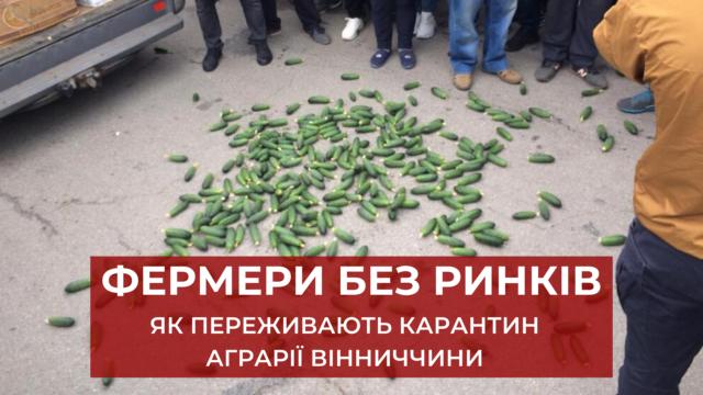 """""""Чимдалі, тим невдоволення зростатиме"""": до чого готуються фермери Вінниччини через закриті ринки"""