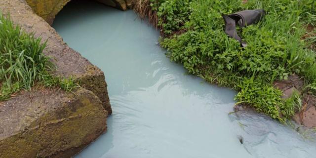 Вінницькі екологи перевіряють забруднення річки Тяжилівка. ФОТО