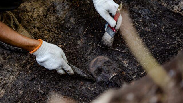 У Вінниці знайшли вірогідно найбільше у світі кладовище вояків Української Галицької Армії. ФОТО, ВІДЕО