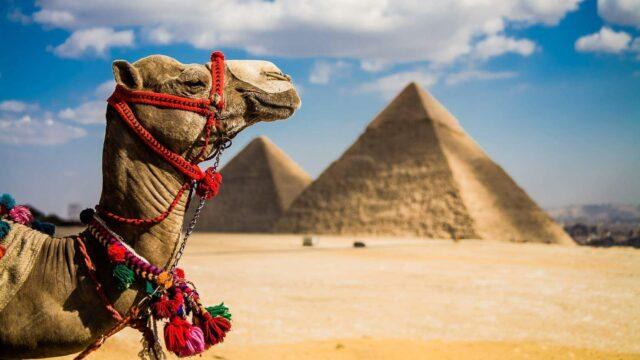 Сім'ї учасників АТО з Вінниччини отримають путівки до Єгипту