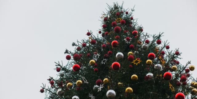 """""""Ялинки в парку не буде"""": мер Вінниці заявив, що новорічні святкування відбудуться в онлайн-форматі"""