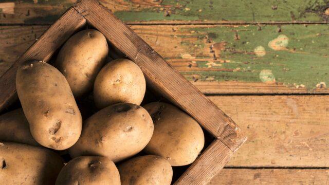 Рекорди областей 2020: на Вінниччині зібрали найбільший урожай картоплі та цукрового буряку
