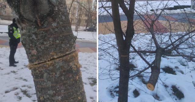 Вночі на проспекті Космонавтів вандал порізав пилкою дерева. ФОТО