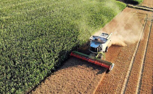 На Вінниччині у власність держави повернули 67 гектарів землі