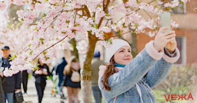 У Вінниці розцвіли ніжно-рожеві сакури і білі магнолії. ФОТОРЕПОРТАЖ