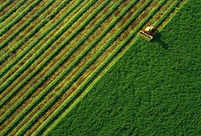 «Рейтинг»: 64% українців не підтримують запровадження ринку землі в Україні