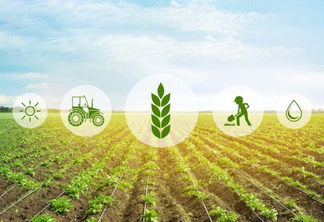 У Вінниці передбачили 1,5 мільйона гривень на створення агрохабу спільно з французькими партнерами