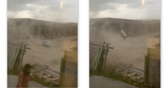На Вінниччині через пориви вітру падали дерева, в частині Вінниці зник інтернет. ФОТО