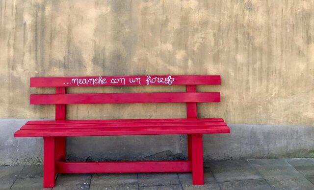 Червона лавка проти насильства: як впровадити італійський досвід у Вінниці. ФОТО