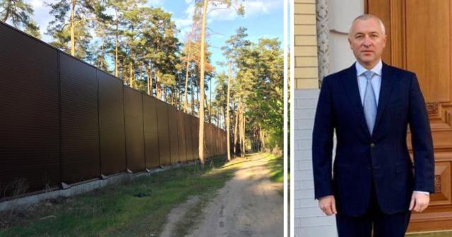 Ігор Калєтнік повернув собі 14 гектарів лісу під Києвом – Єгор Фірсов