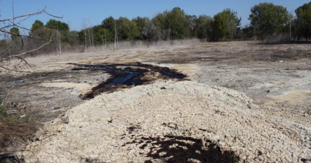 Дим, сморід та рідкі відходи: на Вінниччині селяни скаржаться на місцеве підприємство через забруднення ґрунту та водойм