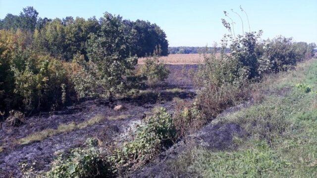 На Вінниччині полум'я знищило близько трьох гектарів сухої рослинності