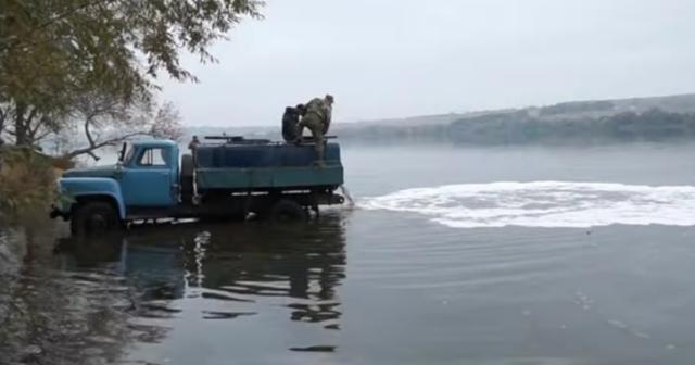 Майже п'ять тонн мальків товстолоба: на Вінниччині розпочалось зариблення водойм. ВІДЕО